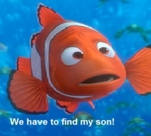 "Marlin the Pixar/Disney character, with a look of concern, says, ""We have to find my son!"""